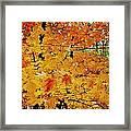 Fall Colors 2014-3 Framed Print