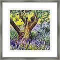 Lavender And Olive Tree Framed Print