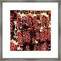 New Mexico Red Chili Ristra And Gralic Framed Print