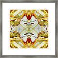 Patterns In Stone - 150 Framed Print