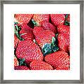 Plant City Strawberries Framed Print