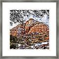 20100101-dsc05481 Framed Print