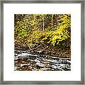 Autumn Elk River Framed Print