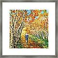 Birch Trees In Russia Framed Print