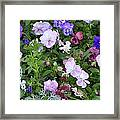 Callaway Gardens Framed Print