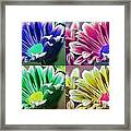 Firmenish Bicolor Pop Art Shades Framed Print