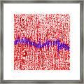 Mitotic Spindle Tem Framed Print