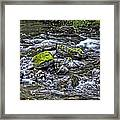 Oregon Framed Print