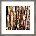 Rough Abstract Ceramic Surface Framed Print