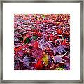 Special One Framed Print