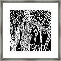3 Trees Tree Squared Tree Cubed Tree Four Black White Inverted Framed Print
