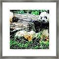 3722-panda -  Plein Air 1 Sl Framed Print