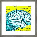 Learn About Your Brain Framed Print