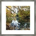 Alley With Falling Leaves In Fall Park Framed Print
