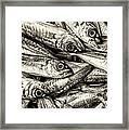 Tile Of Fishes Framed Print