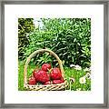 A Basket Of Strawberries Framed Print