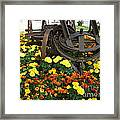 A Blast From The Past Framed Print