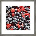A Bunch Of Berries Framed Print