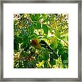 A Day With Mr. Tanager 7 Framed Print