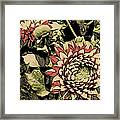A Floral View Framed Print