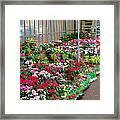 A French Flower Market Framed Print