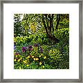 A Garden Of Color Framed Print