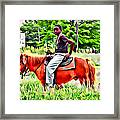 A Horse In Philly Framed Print