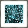 A Leaning Tree Over The Little Naches River Framed Print
