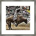 A Night At The Rodeo V8 Framed Print
