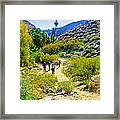 A Pause On Lower Palm Canyon Trail In Indian Canyons Near Palm Springs-california Framed Print