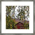 A Peak Of Fall Red Barn Framed Print