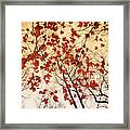 A Skyward View Of The Bare Branches Framed Print
