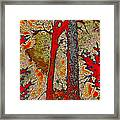 A Touch Of Autumn Abstract V Framed Print