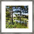 A Tranquil Pond At Walt Disney World Framed Print