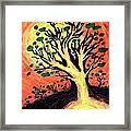 A Tree Is Born Framed Print by David Condry