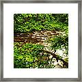 A View Of Eagle Creek Framed Print