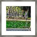 A Walk In The Park By Diana Sainz Framed Print