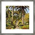 Abbey Gardens Of Tresco On The Isles Of Scilly Framed Print