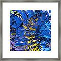 Abstract Curvy 10 Framed Print