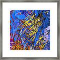 Abstract Curvy 11 Framed Print