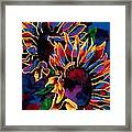 Abstract Sunflowers Framed Print