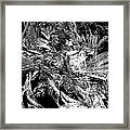 Abstraction  0495 - Marucii Framed Print