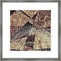 Abstraction 0630 Marucii Framed Print