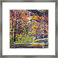 Acorn Lake Series 001 Framed Print