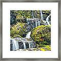 After The Rain Framed Print by Victor Culpepper