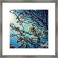 After The Storm In Blue Framed Print