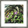 Agave And African Violets Framed Print