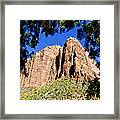 Along Emeral Pools Trail - Zion Framed Print