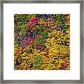 Amazing Cloudland In The Fall Framed Print