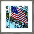 America The Beautiful Framed Print